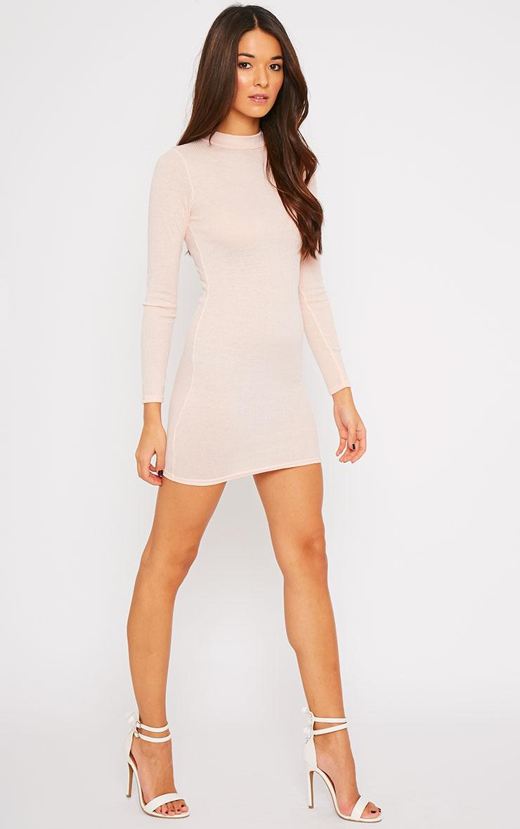 Basic Nude Long Sleeve Mini Dress 3
