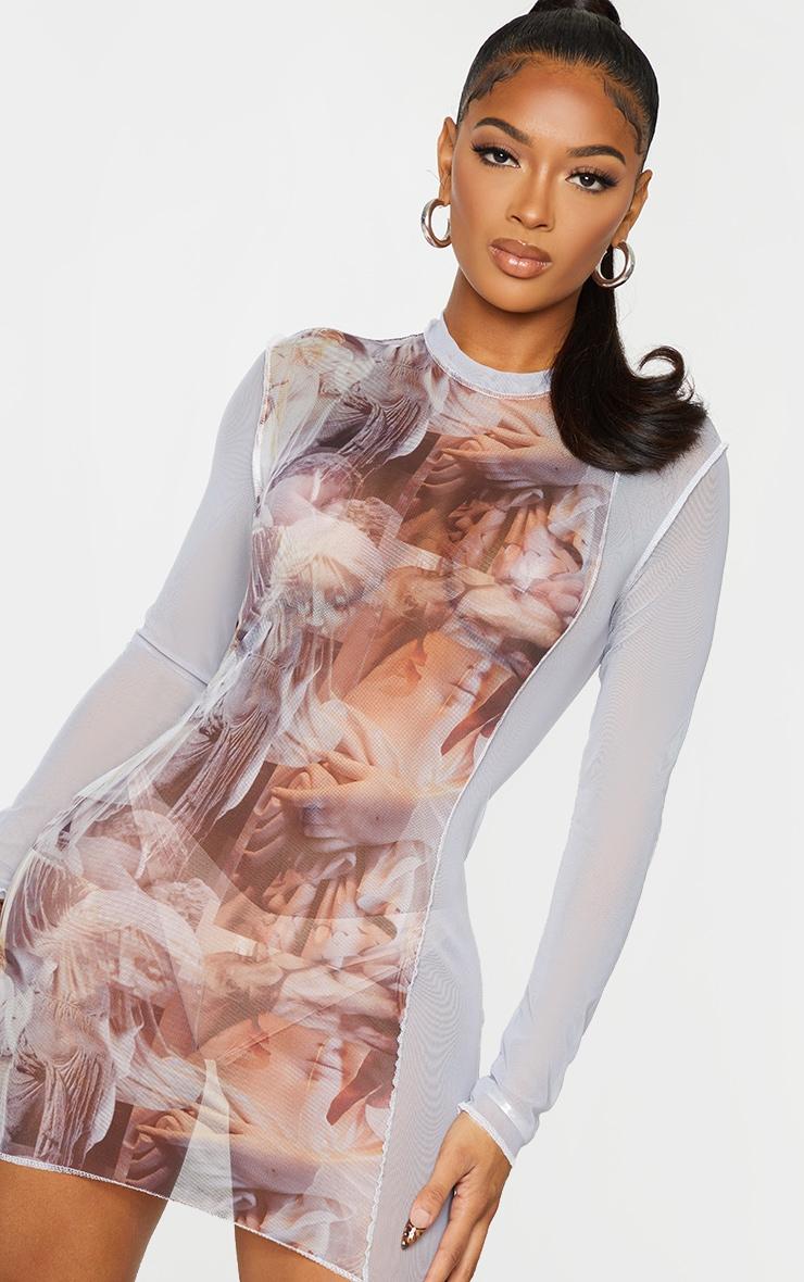 Shape Nude Renaissance Print Sheer Mesh Overlock Detail Bodycon Dress 4
