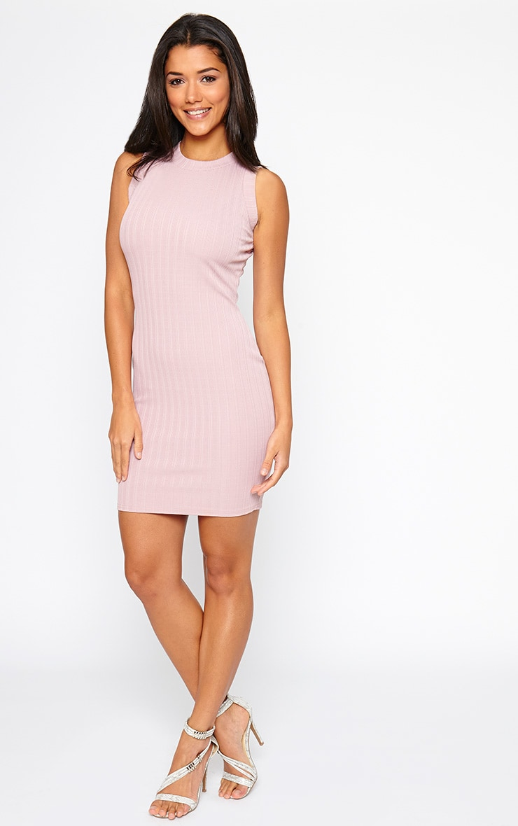 Stefany Mauve Ribbed Mini Dress 4