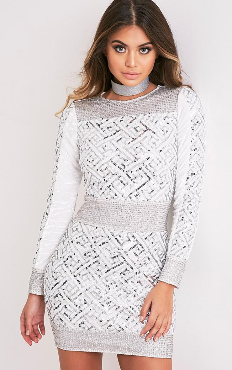 Kimya Silver Premium Sequin Velvet Panel Bodycon Dress 5