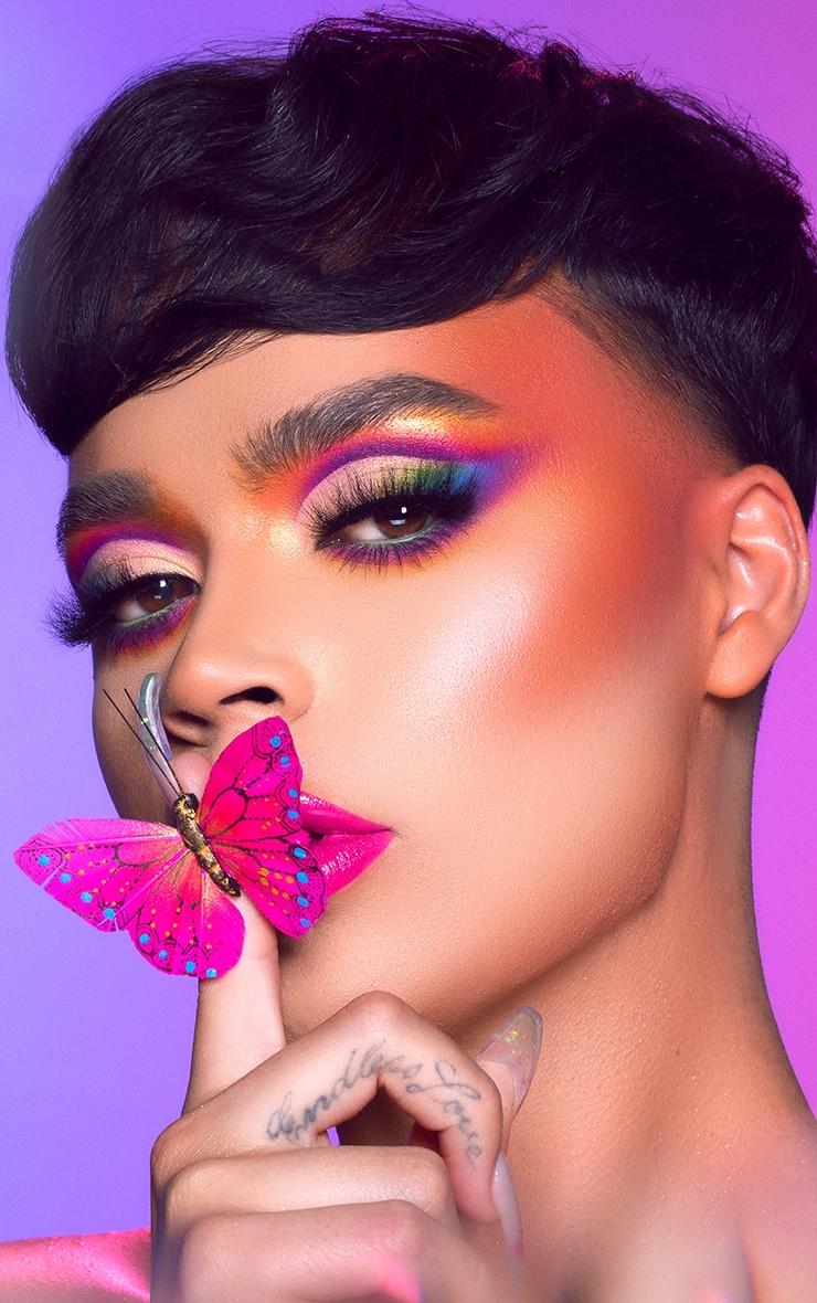 BH Cosmetics LaVieDunPrince 12 Color Shadow Palette 2