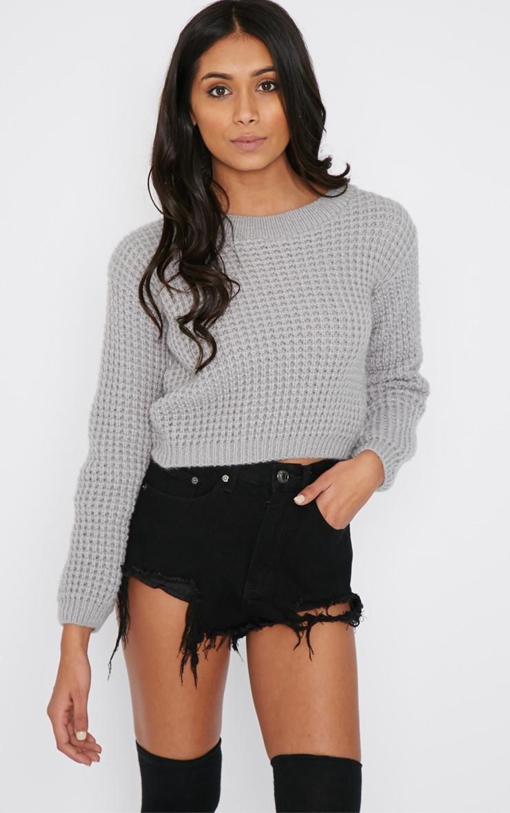 Tilde Grey Knitted Crop  2
