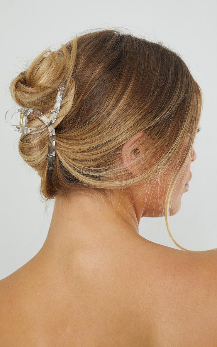 Clear Oval Hair Clip 1