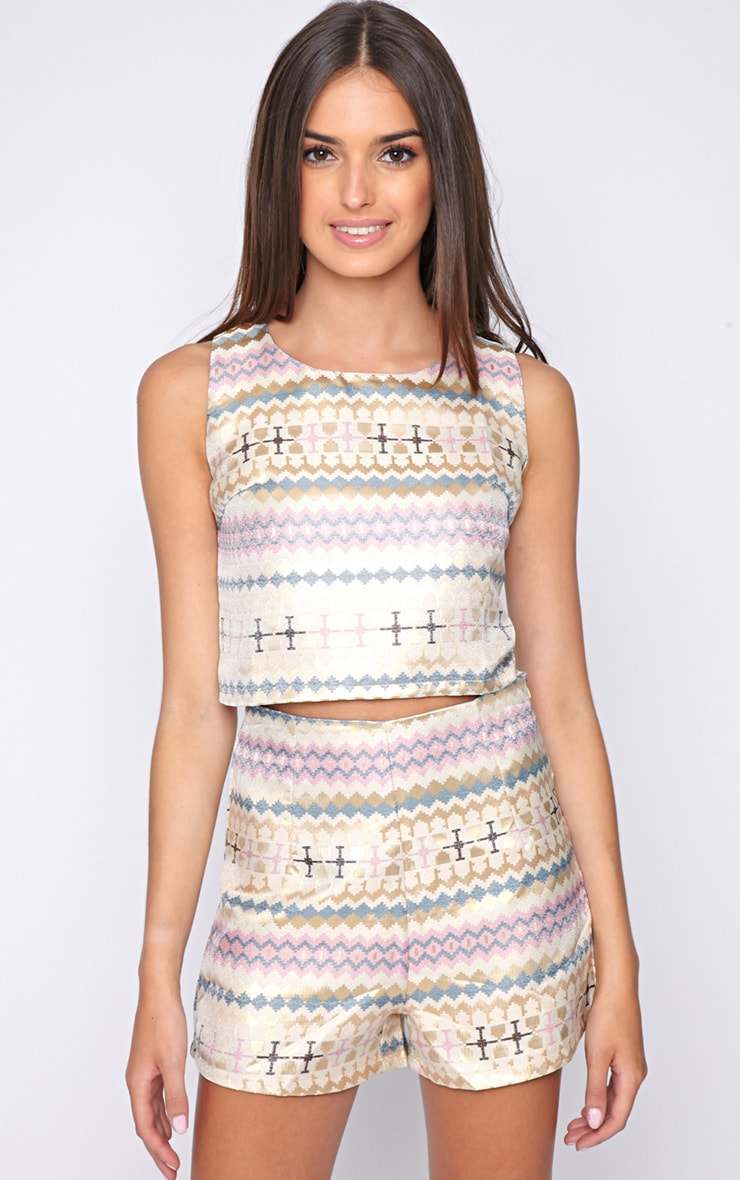 Rosy Pastel Aztec Crop Top  1