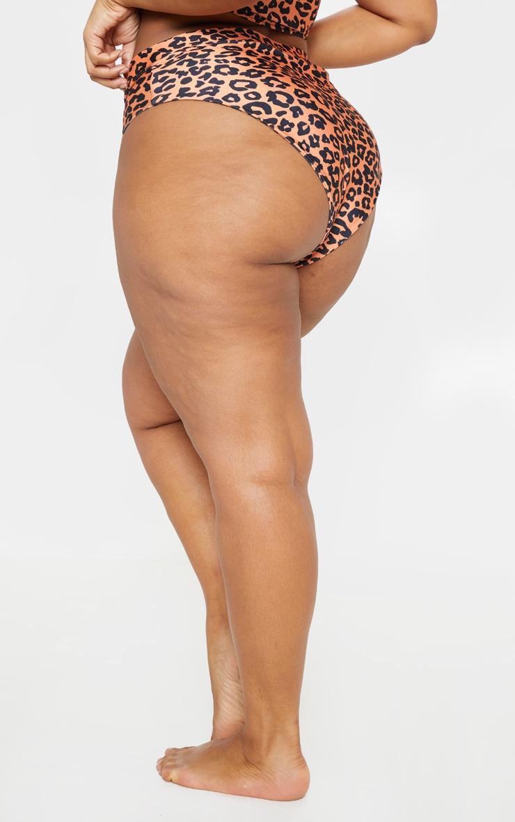 Plus Leopard Print Zip Detail Bikini Bottom 3