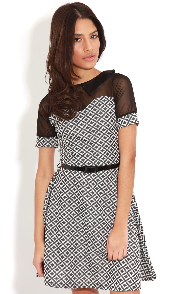 Patti Monochrome Contrast Collar Skater Dress 1