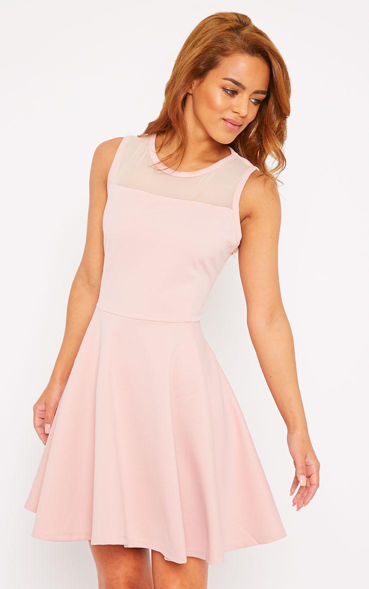 Adele Pink Mesh Panel Skater Dress 1