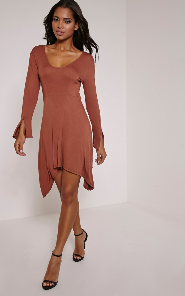 Basic Rust Long Sleeve Drop Hem Skater Dress 1
