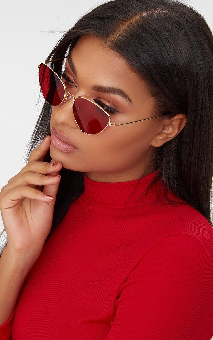 Red Cat Eye Lens Retro Sunglasses 2